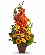Teleflora's Sentimental Dreams